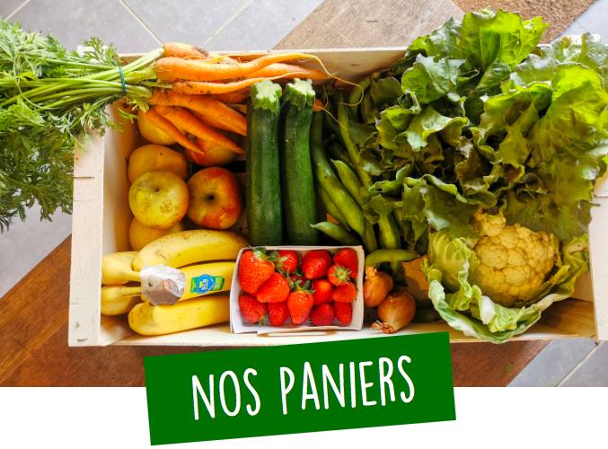 panier fruits légumes